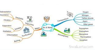 cara membuat mind map di ms word